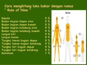 www.krimmultiguna.wordpress.com